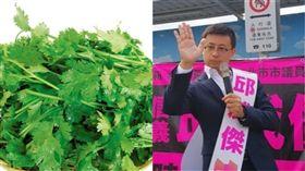 呱吉籌組新政黨 香菜(組合圖/資料照)