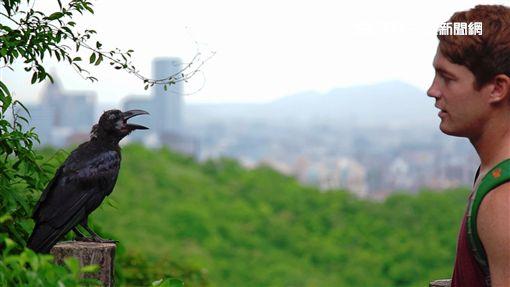 登山步道,台北市,爬山 圖/翻攝自北市府官網