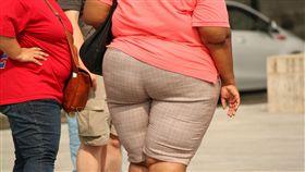 大屁股,肥胖,示意圖/翻攝自Pixabay