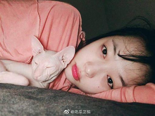 希澈直播中出現的貓,疑似是雪莉生前愛貓。(圖/翻攝自微博)
