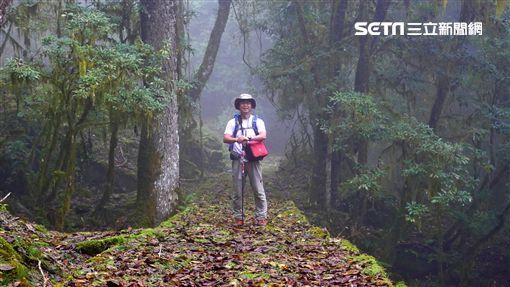 金獎導演麥覺明11年追逐熊跡 首部山林生態電影 《黑熊來了》圖/牽猴子提供