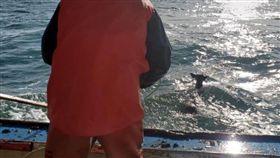 出海捕龍蝦!海中撈出一隻漂浮「鹿」 漁夫展開溫馨救援(圖/翻攝自Ren Dorr臉書)