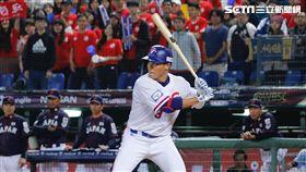 12強棒球賽,王柏融。(圖/記者林聖凱攝影)