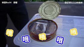 瑞典人示範專業開鯡魚罐頭 網驚呼:刺鼻臭氣消失?