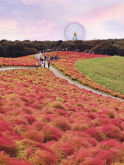 日本,旅遊,台灣,便宜,距離,PTT 圖/翻攝自IG_joanna9381