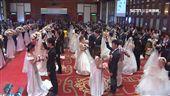 中華電辦婚禮!65對佳偶搭幸福列車