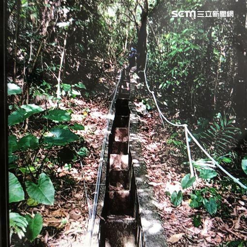 台北,故宮,博物館,屍體