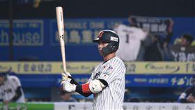 12強日本隊山田哲人13日對戰墨西哥一役擔任第1棒一壘手。(圖/記者王怡翔攝影)