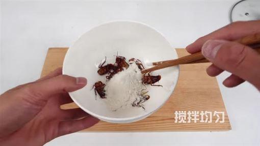 美洲大蠊,蟑螂,酥炸,料理,噁心 ID-2243754