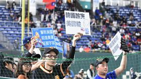 ▲12強中、美戰,球迷自製韓國輸完美國輸標語。(圖/記者王怡翔攝影)