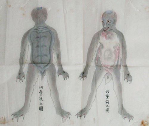 河童畫像(新華網)