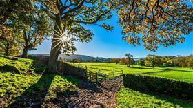 農場(圖/翻攝自Pixabay)