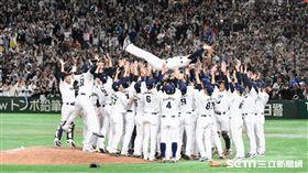 ▲日本隊世界棒球12強賽冠軍稻葉篤紀韓國隊。(圖/記者王怡翔攝影)