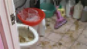 馬桶,阻塞,爆炸,排泄物(爆廢公社二館)