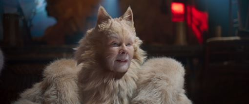 CATS貓 UIP提供