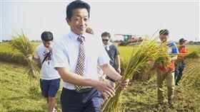 日本北海道青農參訪嘉義縣(1)日本北海道名寄市道北農業協同組合代表理事東野秀樹(前),26日帶領4名日本青年農民參訪嘉義縣太保市的有機米收割。中央社記者蔡智明攝  108年11月26日