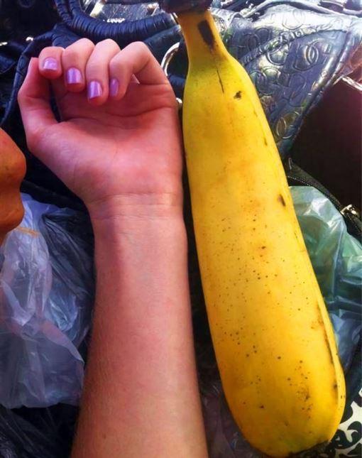 芭蕉,30公分,品種,香蕉,巴布亞新幾內亞