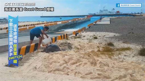 ▲海巡同仁幫助海龜媽媽「做保濕動作」。(圖/海巡署長室 Coast Guard 授權)