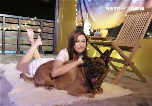 夏宇童推新歌不安MV不見男主角 卻找來毛小孩「5熊」助陣 圖片提供:五熊國際娛樂