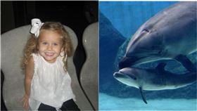 海豚失控爆衝!開心合照成惡夢…10歲女童遭拖水中慘滅頂(合成圖/翻攝自臉書)
