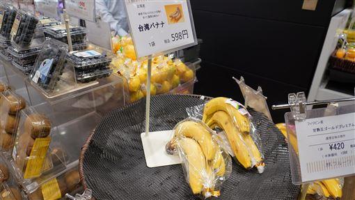 屏東香蕉日本通路上市屏東香蕉近期在日本百貨和超市通路陸續上市,屏東縣長潘孟安2日表示,日本百貨超市店長盛讚台灣香蕉銷售情況火熱,顧客都說口感一級棒,台灣香蕉的價格和品質更拉開與菲律賓、中南美洲香蕉的差距,深受日本消費者喜愛。(屏東縣政府提供)中央社記者郭芷瑄傳真  108年12月2日