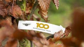 ▲賓利在英國工廠種100棵樹(圖/翻攝網路)