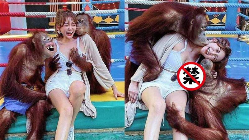 正妹合照被2猩猩「玩弄雪乳」網暴動:好羨慕…本尊神到了