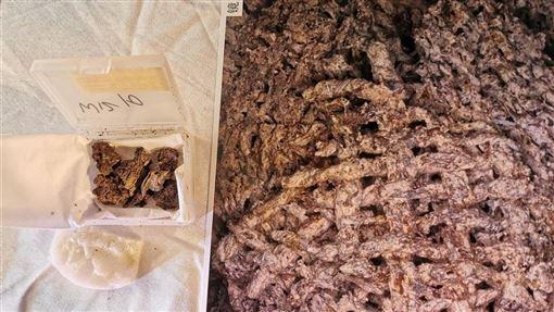 中國絲綢博物館科研團隊透過酶聯免疫檢測技術,在滎陽汪溝遺址的4個翁棺中發現絲織品殘存。圖為滎陽汪溝遺址出土的碳化絲織品及放大後顯示出的紋路。(中新社提供)