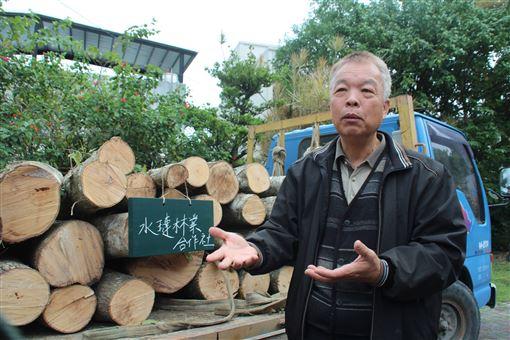 花蓮,林管處,林下經濟,轉行,香菇段木(圖/中央社)