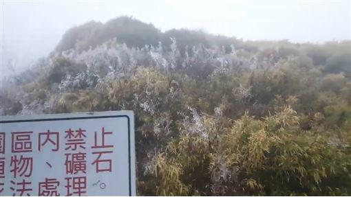 合歡山結冰珠 要降雪還不夠冷(圖/翻攝畫面)