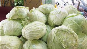 高麗菜,超種,紫爆,農糧署,減量走勢(圖/中央社)