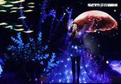 莫文蔚的巡迴演唱會「絕色巔峰之旅」感性告別,粉絲嗨爆最後一次在小巨蛋開演唱會。(記者邱榮吉/攝影)