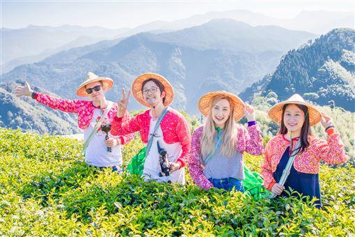 阿里山賞楓季節登場(圖/阿里山國家風景區管理處提供)