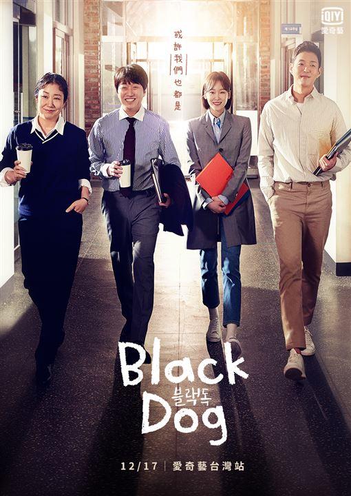 韓劇,Black Dog,徐玄振,羅美蘭 愛奇藝台灣站提供