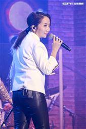 陶晶瑩參加pchome雙十二演唱會。(圖/記者林士傑攝影)