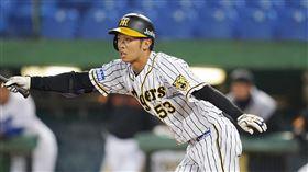 島田海吏敲出追平陽春全壘打,獲選單場最有價值球員。(圖/中職提供)
