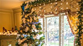 聖誕節,聖誕樹(圖/翻攝自unsplash)
