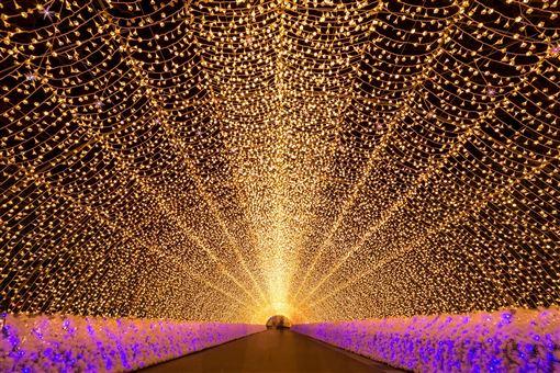 ▲名花之里長達200公尺的燈海隧道(圖/shutterstock.com)