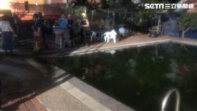 大台北潛水運動中心,女童,溺水
