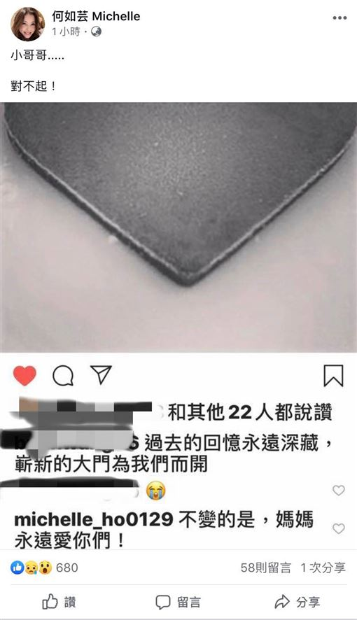 何如芸/臉書