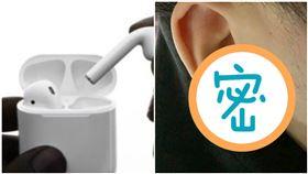 蘋果,耳機,AirPods,果粉