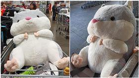 好市多,倉鼠,娃娃(圖/翻攝自Costco好市多 商品經驗老實說)