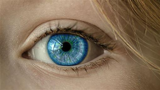 女孩,眼珠,藍眼睛/pixabay