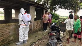 印尼宣布感染非洲豬瘟  採必要措施控制疫情印尼19日宣布非洲豬瘟蔓延至北蘇門答臘省,印尼當局已經採取必要措施,避免疫情擴散。(印尼農業部提供)中央社雅加達傳真 108年12月19日