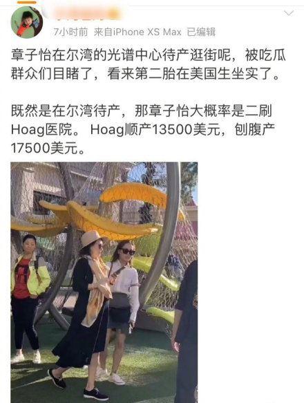 章子怡/翻攝自微博