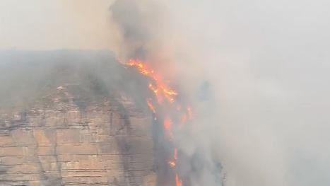 注意空氣品質!NASA:澳濃煙將繞地球一周 恐影響全球
