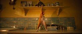 ▲ 《CATS貓》劇照(圖/UIP)