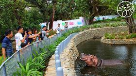 新竹市立動物園提供