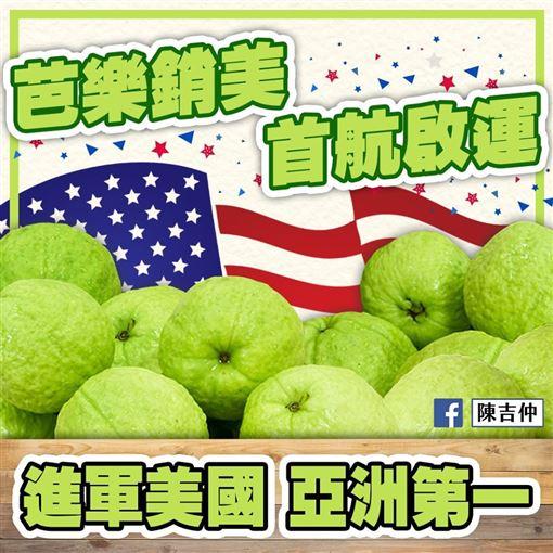 農委會主陳吉仲宣布台灣芭樂銷美亞洲第一,臉書