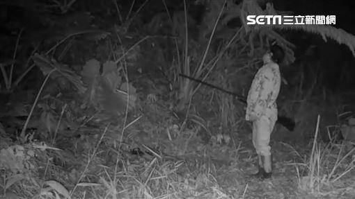 山貓森林,獵人,打獵,石虎